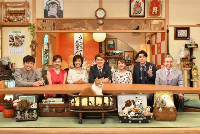 「世界どうぶつスクープ2017春」出演:高橋みなみ [3/12 18:55~]