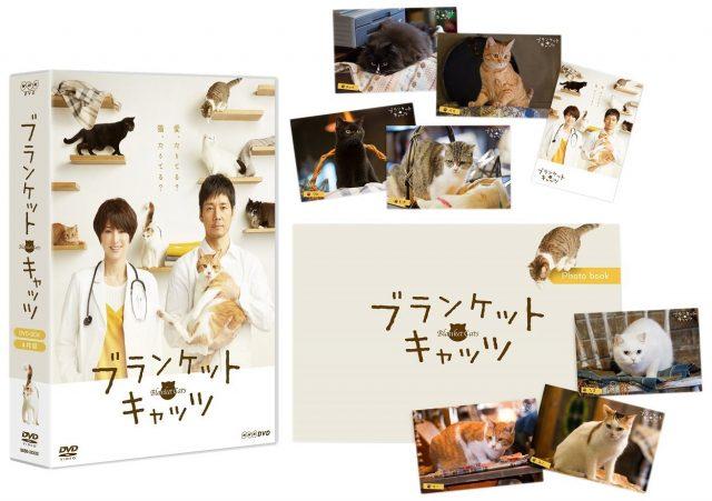 ブランケット・キャッツ [Blu-ray][DVD]