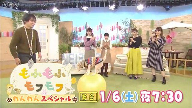 「もふもふモフモフ」わんわんスペシャル * 出演:峯岸みなみ(AKB48) [1/6 19:30~]