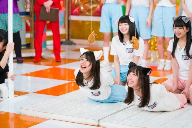 「STU48のセトビンゴ!」メンバーが猫に変身!瀬戸内猫ちゃん運動会! [3/12 25:29~]
