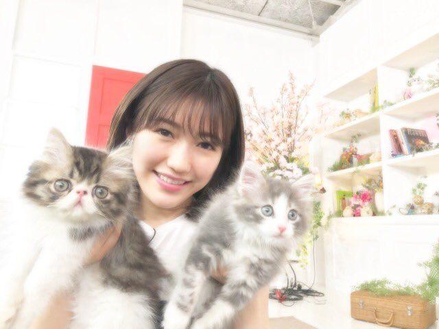 渡辺麻友、NMB48渋谷凪咲「生き物にサンキュー!!」大検証!ネコって飼い主が浮気すると嫉妬するの? [3/28 19:00~]