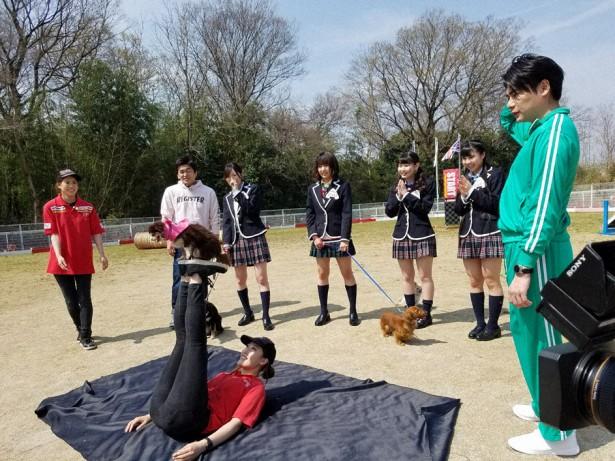 「SKE48 むすびのイチバン!」芸達者なわんちゃんたちとコラボ芸に挑戦! [4/24 24:25~]