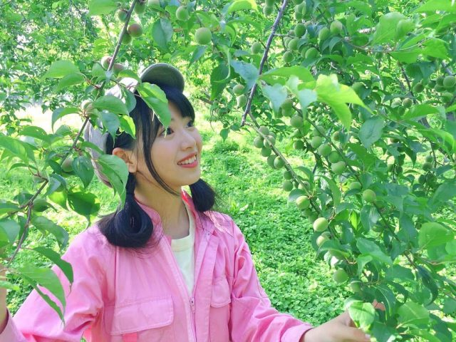 AKB48馬嘉伶「畑でMarry Me!」群馬県のレタス農家に泊まり込み! #3 [6/16 14:55~]