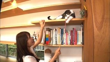 NMB48渋谷凪咲「トコトン掘り下げ隊!生き物にサンキュー!!」ネコのためのリフォームSP [8/8 19:00~]