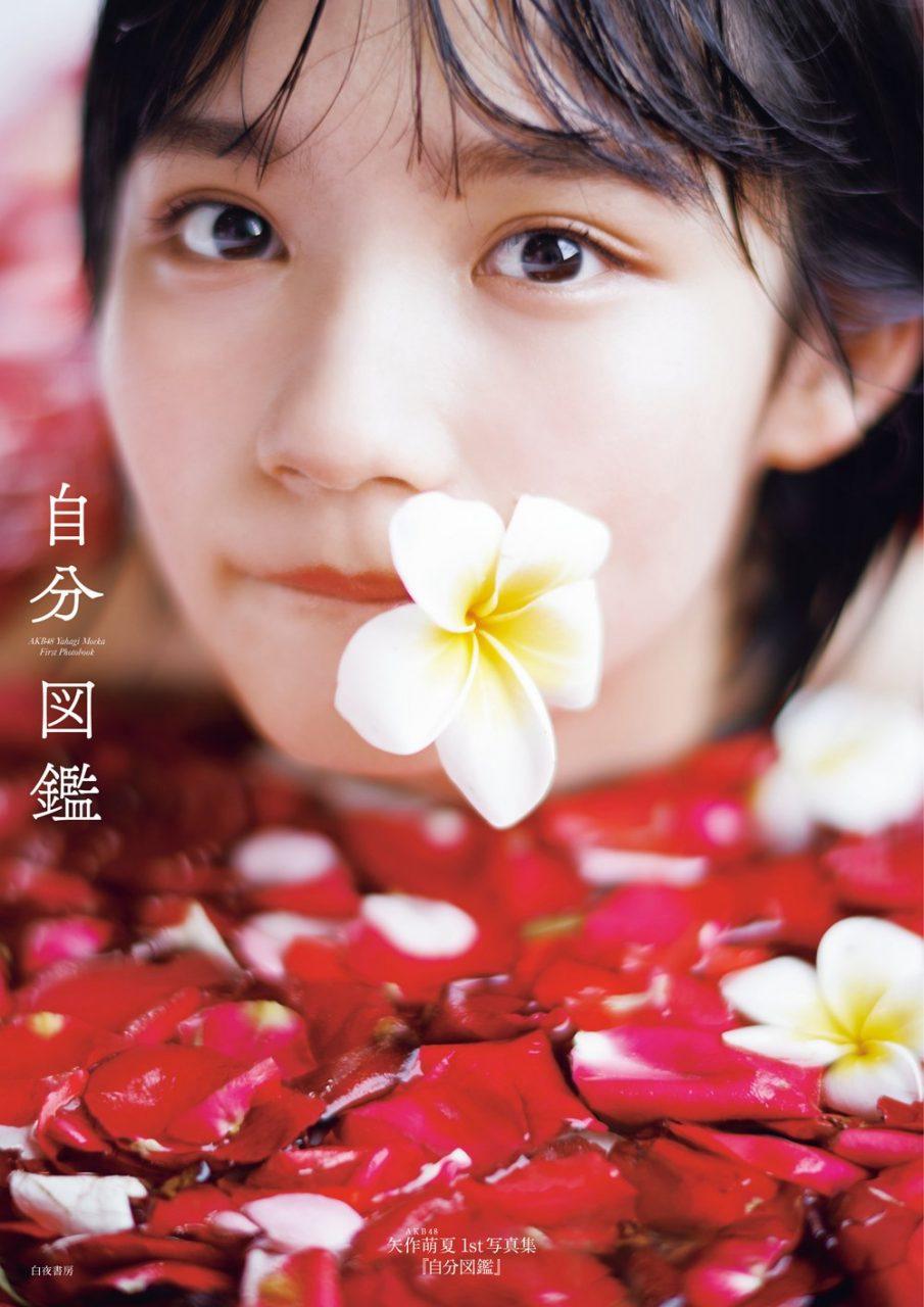 AKB48 矢作萌夏 ファースト写真集「自分図鑑」
