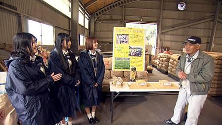 「SKE48の岐阜県だって地元ですっ!」幻の大豆を発見!?伝統守るこだわり大豆