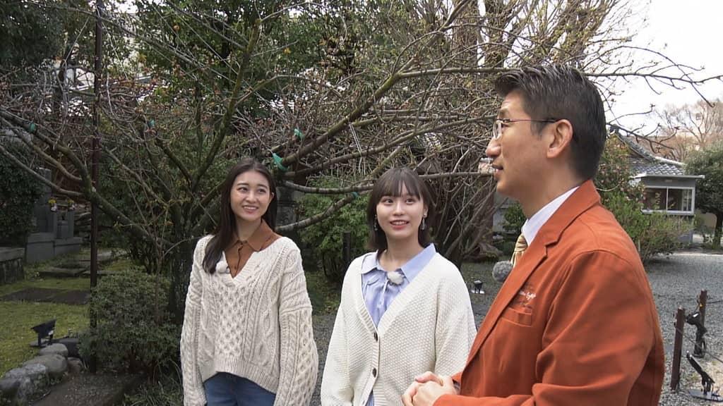 HKT48 豊永阿紀が「趣味どきっ! アイドルと巡る仏像の世界」に出演!