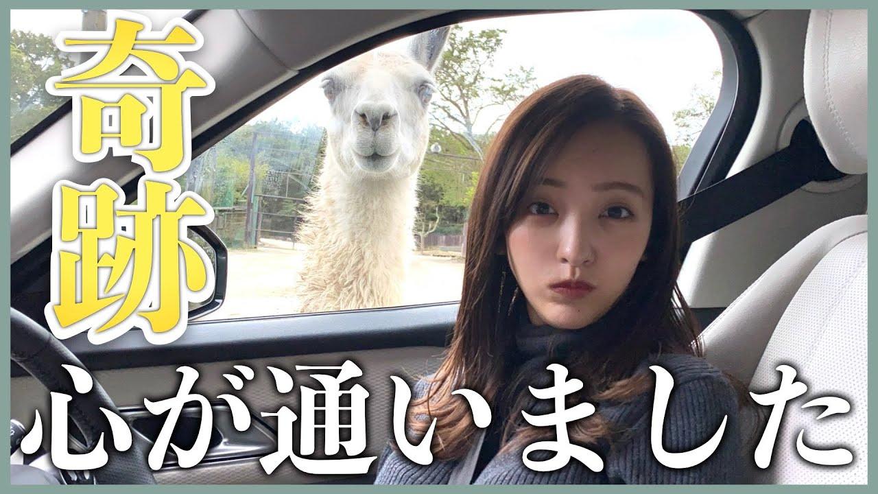 【動画】板野友美×永尾まりや「初のサファリパークで奇跡が連発しました」