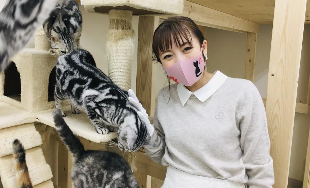 高橋みなみが「ねこ自慢」に出演!タレント猫の養成所&ねこ専門の動物病院をリポート!【BS-TBS】