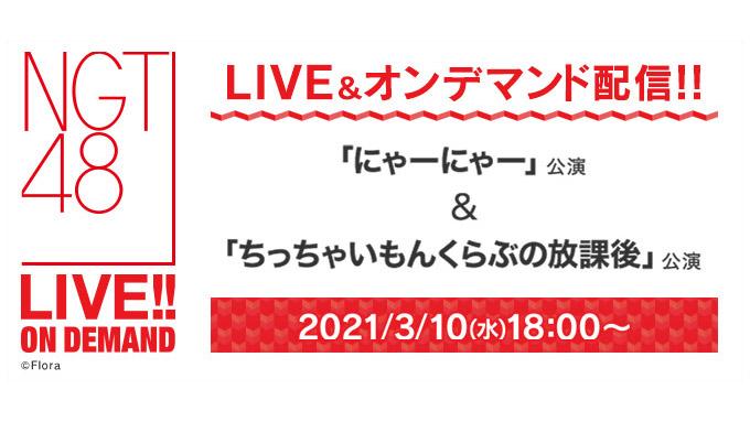 NGT48 「にゃーにゃー」公演&「ちっちゃいもんくらぶの放課後」公演、18時からDMM配信!