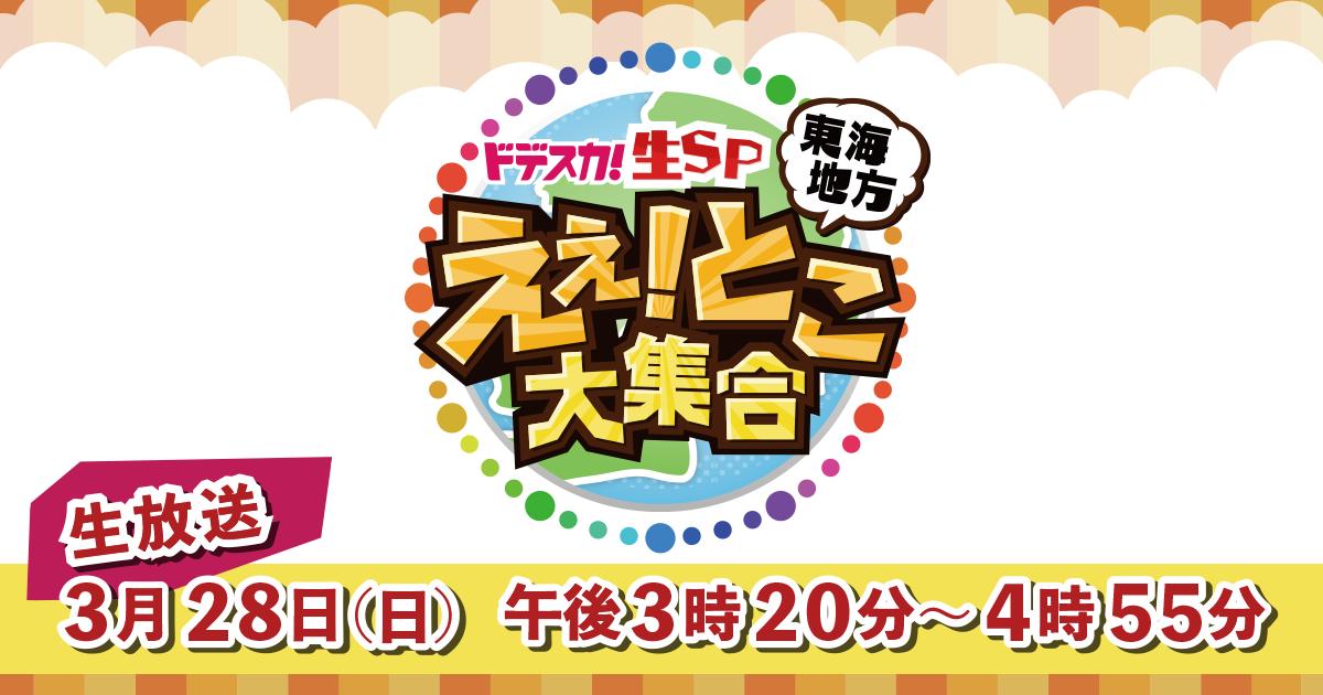 SKE48 須田亜香里が「ドデスカ!生SP 東海地方えぇ!とこ大集合」に出演!桜の名所としても有名な愛知・犬山市から生中継!