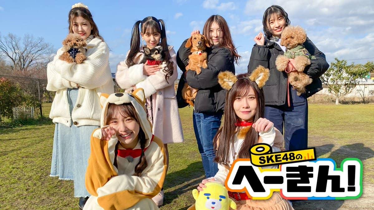 「SKE48のへーきん!」#15:テーマはペット!20時からひかりTV・dTV配信!